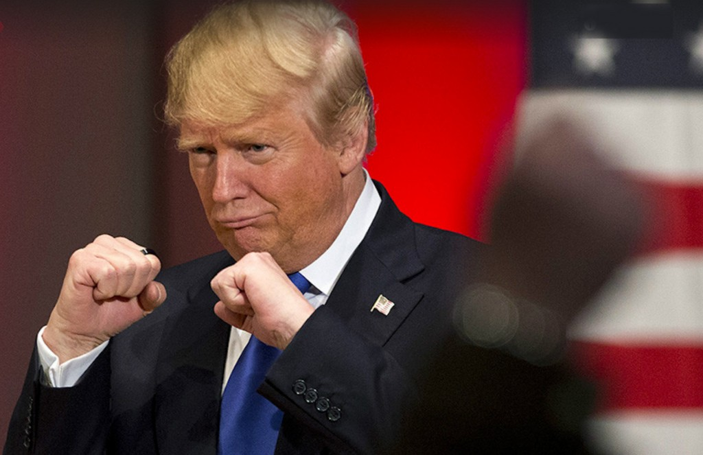 trump knockout