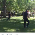 violence erupts in sanctuary city